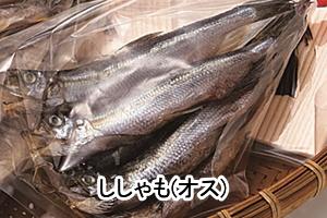 55part-sisyamo